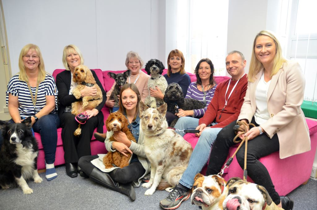 KFA Dogs and their owners - Reducing Stress Levels with the KFA K9's - Can You Beat Us?
